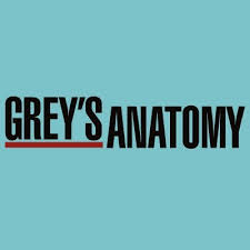 Grey's Anatomy cover photo for the show.