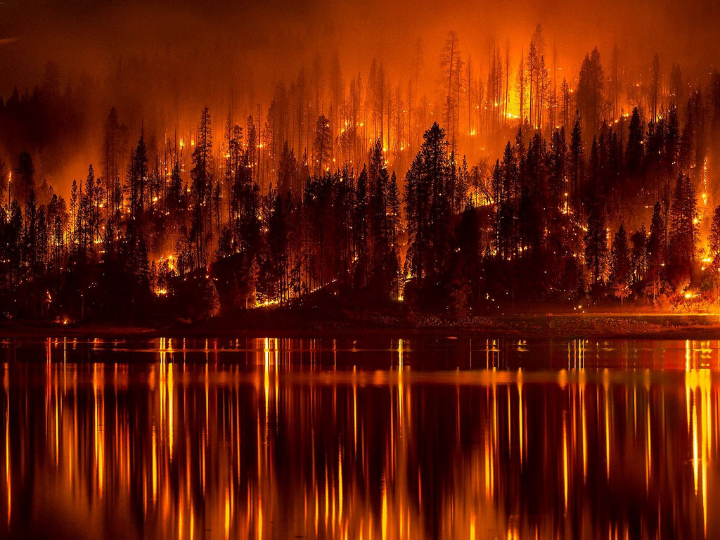 The forest fires burn through out California.