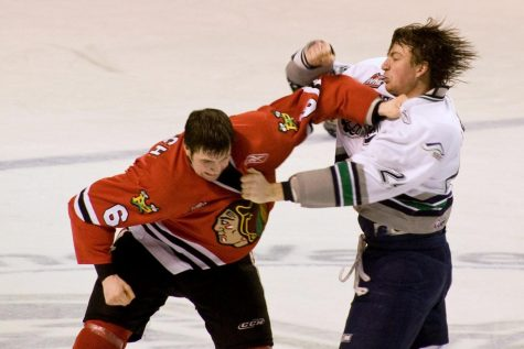 In an NHL game in 2009, two players are engaged in a vicious fight, one of which that attracts a prodigious amount of fans.