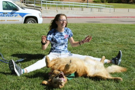 Smagner Bonds With Emotional Support Dog