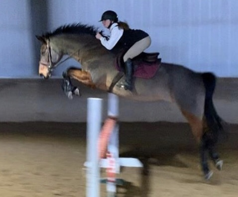 Student seeks equestrian lifestyle